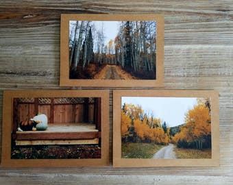 Autumn Path Notecard Collection Set of 3