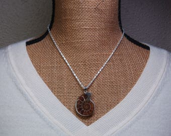 Natural Ammonite Fossil 925 Solid Silver Chain Necklace