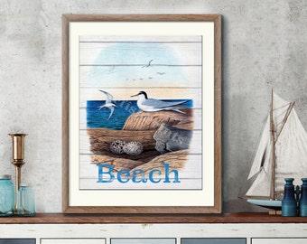 Seabirds 1 Art Print - Least Terns Nautical Illustration Wall hanging - Beach Decor Poster Vintage Illustration