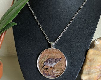 Red Knot - Pendant