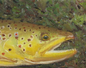 Fly Fishing Art, Brown Trout, 5x7 oil painting, trout painting