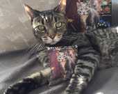 Shop Cats of New York Cat Toy benefitting Tabby's Place