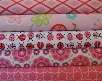 Lady Bug Rag Quilt Kit, Easy to Make, Personalized, Bin L