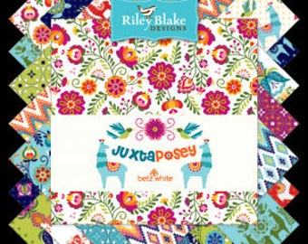 "Juxtaposey Charm Pack Stacker by Betz White for Riley Blake Fabrics, 42 Pieces, 5"" squares, Bin C"
