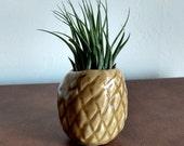 Pineapple Planter, Air Plant Holder, Pineapple Vase, Handmade Ceramic Vase, Ceramic Pineapple, Pineapple Sculpture, Pineapple Decor