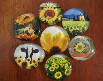 SUNFLOWER MAGNETS Set of 7 Glass Bubble Magnets