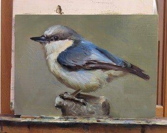 Pygmy Nuthatch - Original oil painting - 5 x 7 inches
