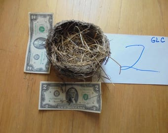 Real found bird nest  Northern Missouri Classroom Natural Teaching Aid  Wreath Centerpiece wedding bridal shower decor Photo prop GLC#2
