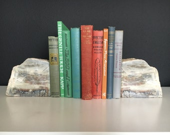 Incredible LARGE Cut Stone Bookends - Geology Bookends - Vintage Stone Slab - Beautiful Coloring, perfect for any bookshelf!