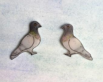 Pigeon (Rock Dove) earrings POST OR DANGLE