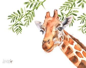 Giraffe print of watercolor painting G21817, A3 size, Giraffe watercolor painting print, African animal print, jungle print