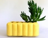 Vintage Yellow McCoy Pottery Succulent Cactus Planter Planter, Indoor Garden, made in USA, Mid Century, Rectangular, Scalloped Sides