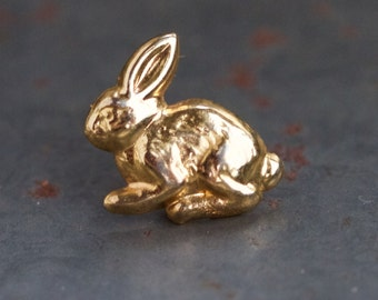 Golden Bunny Pin or Badge - Beware of the Teeny Weenie little Rabbit