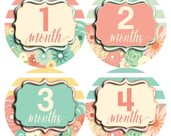 FREE GIFT, Floral Monthly Baby Stickers, Girl, Flower Month Stickers, Baby Month Stickers Girl, Floral Nursery Decor, Pink, Mint, Yellow