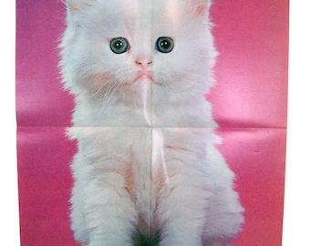 Vintage 1970's Walter Chandoha White Persian Kitten Poster