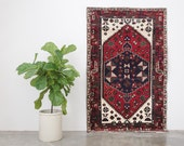 HAMRAZ 4x7 Hand Knotted Persian Wool Rug