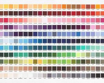 """Kona Printed Color Chart Panel From Robert Kaufman - 24""""x44"""""""