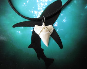 "Shark Tooth Necklace, Modern Day White Shark tooth, Silver plated wire, 20"" Suede leather cord"