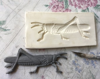 Clay Sprig - Grasshopper - Insect Push Mold -Press Mold or Sprig for Ceramic Decoration and Texture