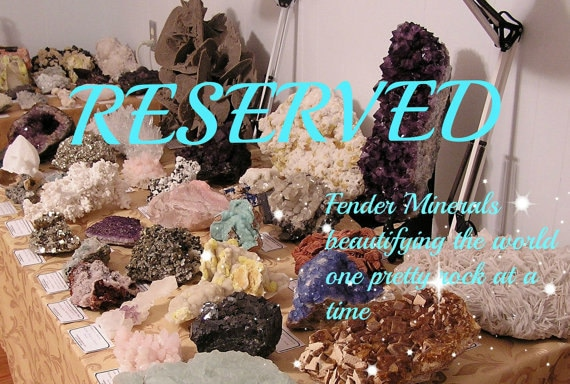 Reserved for PP Rainbow Wood,  Raw Semiprecious Gemstone Rough, Yellow and Red Polychrome Agate Fossil from a petrified forest in Arizona