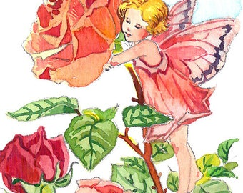 ACEO Limited Edition 1/25-Rose fairy inspired by Cicely Mary Barker,Flower fairy art print of original ACEO watercolor