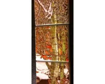Magnet Set Winter Aspen 5.25 in x 1.75 in