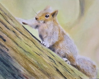 Squirrel Original Art Print Notecard