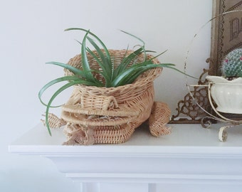 Vintage Wicker Rattan Frog Shaped Planter or Storage | Home Decor, Mid Century, Boho