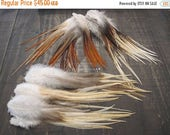 100 Rooster Saddle Feathers ~ Mixed Assortment ~ Cruelty Free