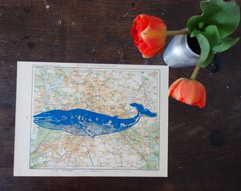 BERLIN, printing whale in blue color on old country map