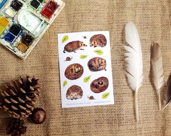 Animal stickers - Hedgehogs with leaves and snails, Wholesale, multibuy available