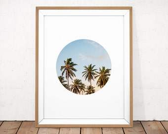 Palm Tree Print, Printable Photography, Tropical Printable, Summer Wall Art, Sunset Printable, Palm Tree Photo, Beach Poster, Photo Poster