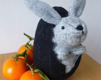 Easter Rabbit in egg