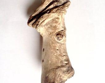 Driftwood | Drivved