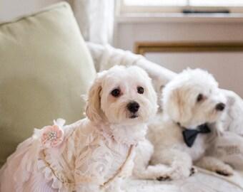 Vintage Style Shabby Chic Dog Dress (small sizes)
