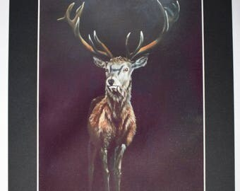 "Fine Art Print of ""Gwilym"" Oil Painting"