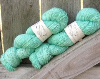 Echo - Twisty BFL - BFL/Nylon - Hand Dyed Sock Yarn