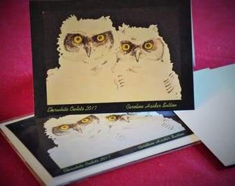 Owlet cards