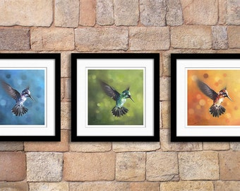 Set of 3 hummingbird oil painting fine art prints - discounted price - giclee prints