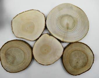 "6""-4"" (5)  Wood Slices, Tree Slices, Wedding Decor, Woodworking, Tree Rounds, Wedding Wood Slices, Rustic Wood Slices, Set of 5 (F18)"