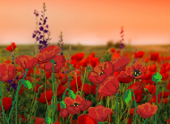 Field of Poppies bead embroidery DIY kit, beaded picture, beading on printed silk, needlework craft set, bead stitching