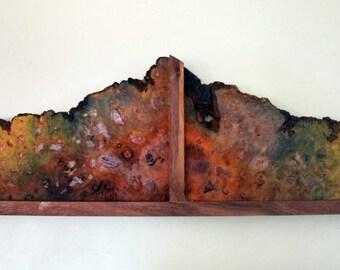 Wood Slab Painting Tree Slices