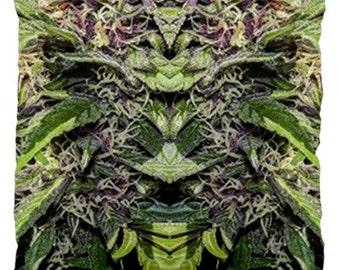 20 X 20 Pillow: Ganja Pillow in Purple Goo Marijuana Print, Large Pillow Cover, Cannabis Pillow- MADE TO ORDER