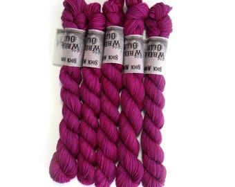 Sock Yarn Mini's Superwash Merino/Nylon 85/15 4ply Handdyed Yarn: JUNIPER