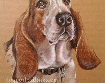 dog portrait, custom dog portrait, custom pet portrait, pet portrait, custom portrait, pet painting, dog art, pet portrait custom, dog