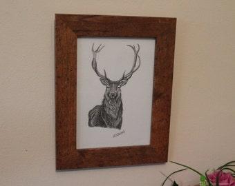 Original 'ciervo' lápiz drawing.artwork. Enmarcado.