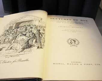 charles dickens novels literary criticism Novel completed in 1861, charles dickens's great expectations, to  analyzed  by oates with all the empathy of, say, a literary critic however.