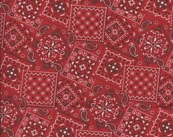 Blazing Bandana Paisley Red Fabric