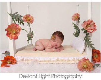 Newborn Bed 4 Post