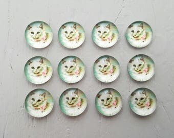 12 CATS Glass Cabochons 10mm round